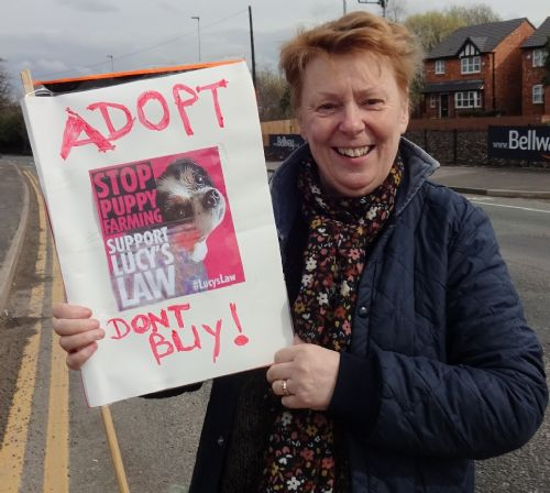 Click to view Boycott Dogs4Us Salford Protest