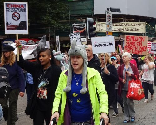 Click to view Manchester Global March for Elephants and Rhinos
