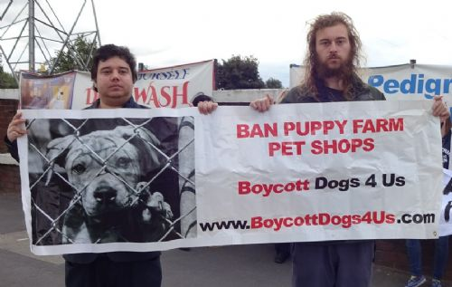 Click to view Dogs4Us protest Salford